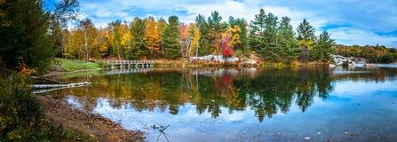 Vista degli alberi variopinti durante la stagione di autunno Fotografia Stock