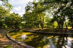 Vista degli alberi verdi nel parco della città, nel giorno di estate soleggiato Fotografie Stock