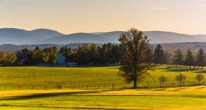 Vista dei campi dell'azienda agricola e delle montagne distanti da Longstreet Observ Fotografia Stock Libera da Diritti