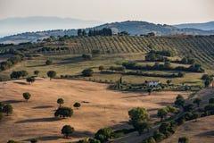 Vista dei campi e delle colline toscani nella regione di Maremma in Italia Immagini Stock Libere da Diritti
