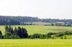 Vista dei campi e delle foreste Fotografie Stock