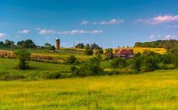 Vista dei campi in Howard County rurale, mA dell'azienda agricola e di Rolling Hills fotografie stock libere da diritti