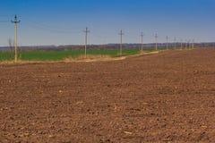 vista dei campi marroni e verdi in molla in anticipo Fotografia Stock Libera da Diritti