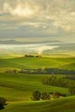 Vista dei campi verdi al tramonto in Toscana Fotografia Stock