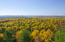 Vista dei colori di caduta nella sosta Ontario del Algonquin Fotografie Stock Libere da Diritti
