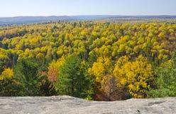 Vista dei colori di caduta nella sosta Ontario del Algonquin Fotografia Stock Libera da Diritti