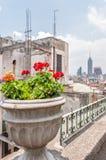 Vista dei grattacieli del centro dai tetti di zocalo in Città del Messico Fotografia Stock Libera da Diritti