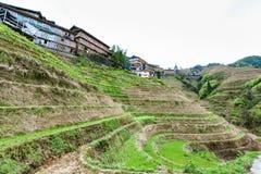 Vista dei motivi a terrazze nel villaggio di Dazhai Fotografia Stock Libera da Diritti