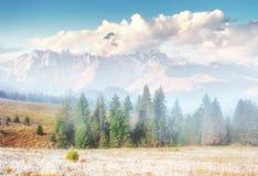 Vista dei picchi di montagna in primavera Fotografie Stock