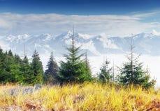 Vista dei picchi di montagna in primavera Immagini Stock