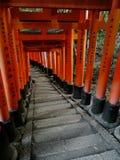 Vista dei portoni rossi di Torii al santuario di Fushimi Inari a Kyoto fotografia stock