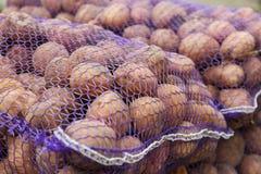 Vista dei sacchi con le patate Fotografia Stock Libera da Diritti