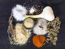 vista dei sali Seasoned con gli ingredienti sulla tavola fotografie stock