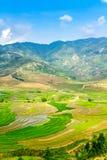 Vista dei terrazzi degli agricoltori etnici con riso recentemente piantato Fotografia Stock