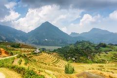 Vista dei terrazzi del riso agli altopiani di PA del Sa nel Vietnam Fotografia Stock Libera da Diritti