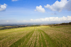 Vista dei wolds di Yorkshire Fotografie Stock