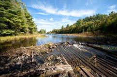 Vista del agua del claro del lago carpenter Fotos de archivo