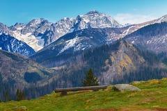 Vista del alto Tatras al polaco foto de archivo libre de regalías