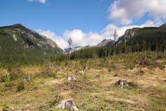 Vista del alto Tatras en Eslovaquia Imágenes de archivo libres de regalías