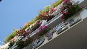 Vista del balcone con i fiori Fotografie Stock Libere da Diritti