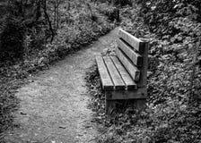 Vista del banco de parque de madera que muestra el detalle de las maderas, visto por un sendero vacío Imagen de archivo