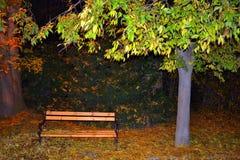 Vista del banco di parco di notte di caduta Fotografie Stock