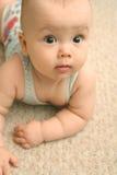Vista del bebé imagen de archivo libre de regalías