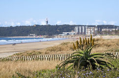 Vista del bluff dalla spiaggia di Addington, Durban Sudafrica Immagini Stock Libere da Diritti