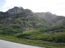 Vista del bordo della strada del pendio di collina delle Barbados Fotografia Stock