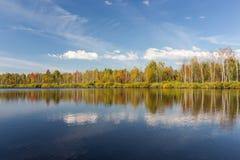 Vista del bosque del otoño del agua Imágenes de archivo libres de regalías