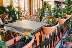 Vista del caffè aperto vuoto di estate con le sedie di vimini e della mobilia di legno accanto ai vasi con le piante ed i fiori Immagini Stock