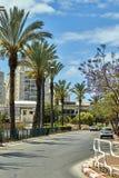 Vista del callejón de la ciudad con las palmeras contra el cielo azul con las nubes fotografía de archivo
