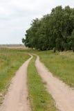 Vista del camino del campo Foto de archivo libre de regalías