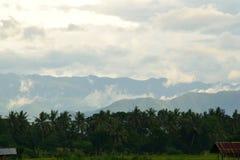 Vista del campo Imagenes de archivo