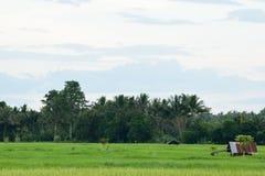 Vista del campo Imagen de archivo libre de regalías