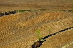 Vista del campo arato fotografia stock