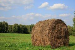 Vista del campo dell'azienda agricola che mostra le balle di fieno Fotografia Stock