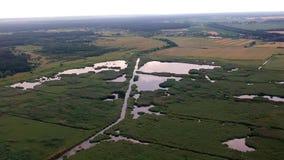 Vista del campo di erba di estate prima della tempesta archivi video