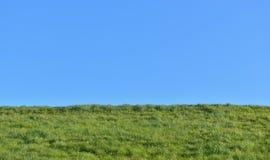 Vista del campo di erba verde dalla terra Fotografia Stock