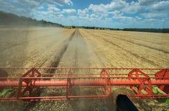 Vista del campo di grano dalla carrozza di, una mietitrebbiatrice immagine stock libera da diritti