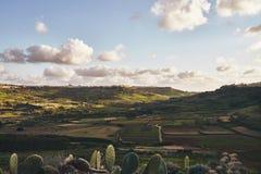 Vista del campo en la puesta del sol fotos de archivo libres de regalías