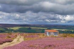 Vista del campo inglés Imagenes de archivo