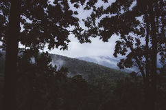 Vista del canal de la montaña los árboles en la noche Foto de archivo libre de regalías