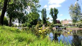 Vista del canale; belle case; scena di stupore archivi video