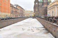 Vista del canale di Griboyedov a St Petersburg Fotografie Stock Libere da Diritti