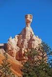 Vista del canyon di Bryce l'utah U.S.A. Fotografia Stock Libera da Diritti