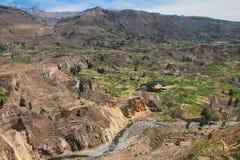 Vista del canyon di Colca nel Perù Immagine Stock