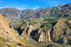 Vista del canyon di Colca nel Perù Fotografie Stock