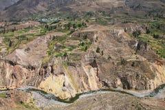 Vista del canyon di Colca nel Perù Fotografia Stock Libera da Diritti
