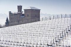 Vista del castello di Grinzane Cavour nell'inverno con neve fotografia stock libera da diritti